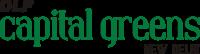 DLF Capital Greens Delhi